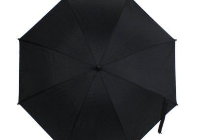 "v4184  skėtis ""LIetus"""